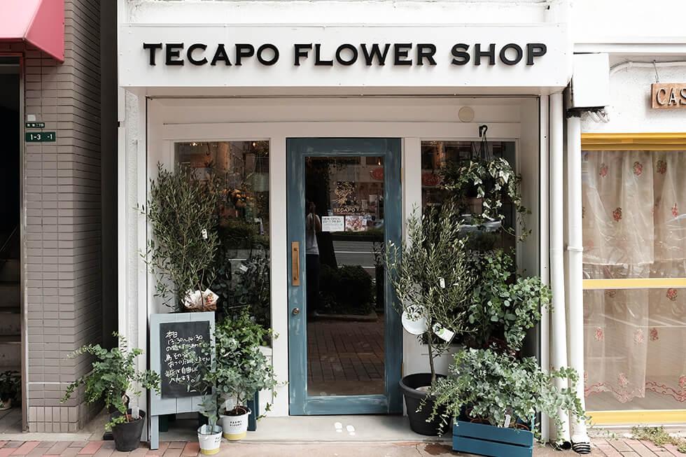 TECAPO